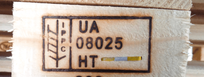 termo-1-768x547-1-min